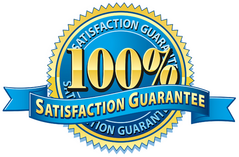 100-satisfactio
